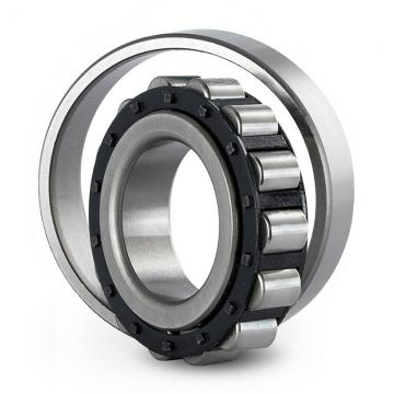35 mm x 100 mm x 25 mm  SKF NJ 407  Cylindrical Roller Bearings