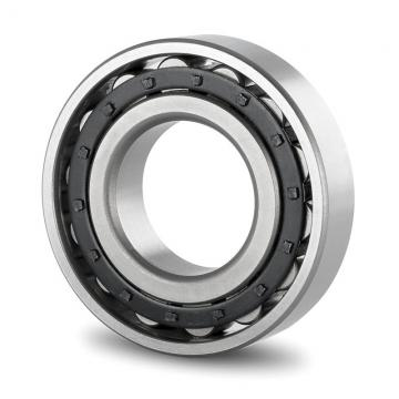 35 mm x 100 mm x 25 mm  SKF NJ 407  Cylindrical Roller Bearings