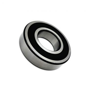 EBC 6007 ZZ C3  Single Row Ball Bearings