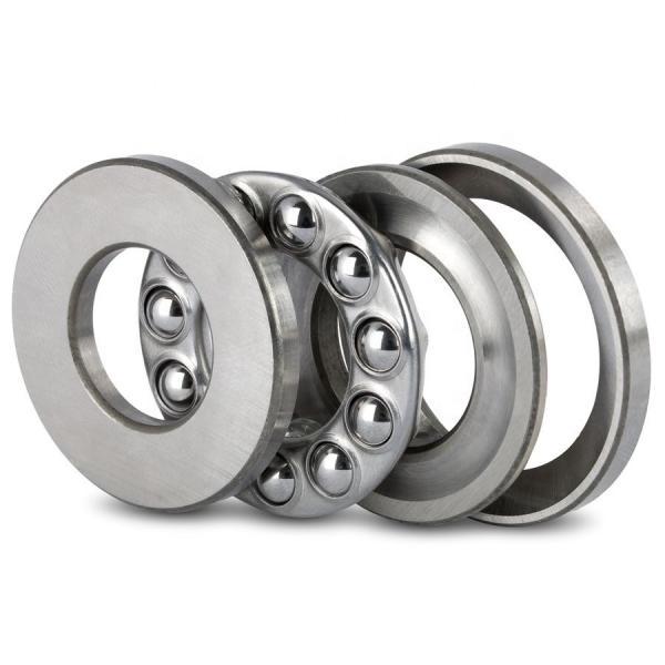 0.236 Inch | 6 Millimeter x 0.394 Inch | 10 Millimeter x 0.394 Inch | 10 Millimeter  INA IR6X10X10-IS1  Needle Non Thrust Roller Bearings #1 image