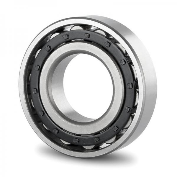 75 mm x 130 mm x 25 mm  SKF NUP 215 ECP  Cylindrical Roller Bearings #1 image
