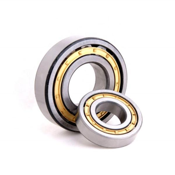 1.181 Inch | 30 Millimeter x 2.835 Inch | 72 Millimeter x 0.748 Inch | 19 Millimeter  SKF NJ 306 ECP/C3  Cylindrical Roller Bearings #1 image